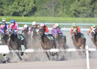 ギャンブルの代名詞・競馬の画像